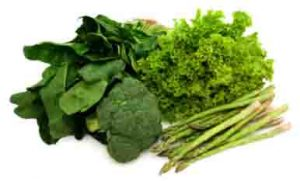image of leafy green vegetables