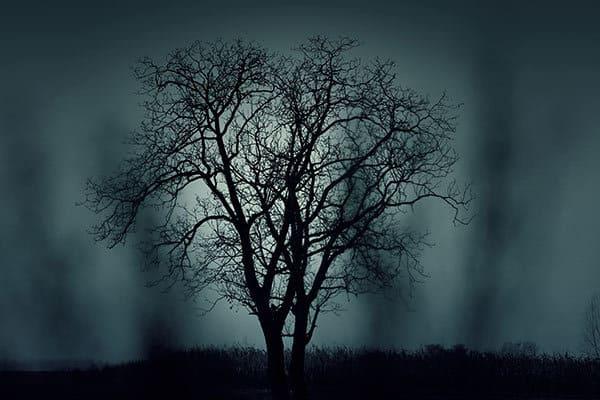 fear of the dark phobia
