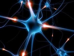 image representing brain activity
