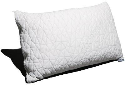 coop memory foam pillow
