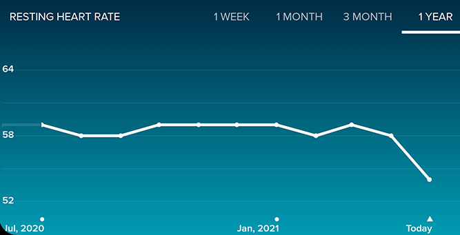 screenshot of my fitbit app showing my resting heart rate