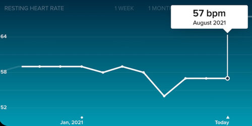 screenshot from the fitbit app showing ethan green's resting heart rate in the last year
